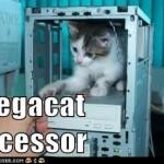 Geek cukiság – 1 Megacat